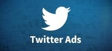 Cómo llevar tu empresa al éxito con Twitter Ads icon