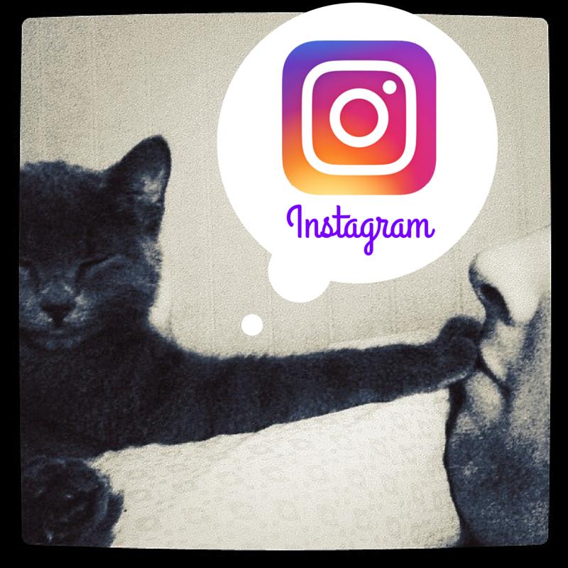 5_cosas_sobre_Instagram_que_cualquier_marketer_debe_saber.png