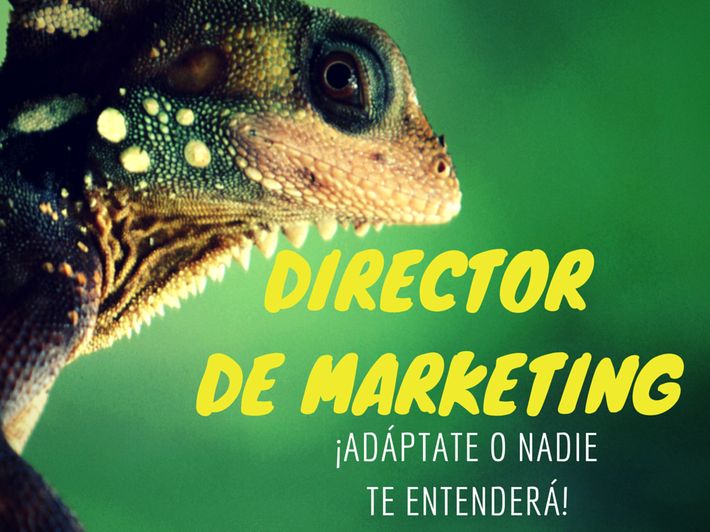 Director_de_Marketing_adptate_o_nadie_te_entender.png