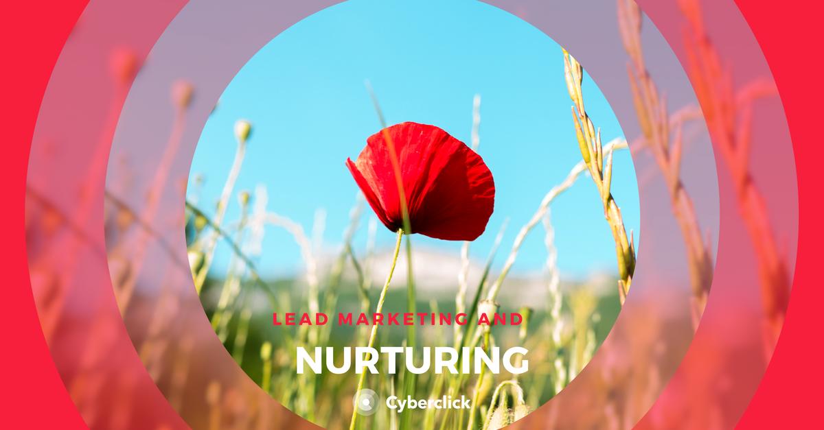 Lead nurturing and marketing