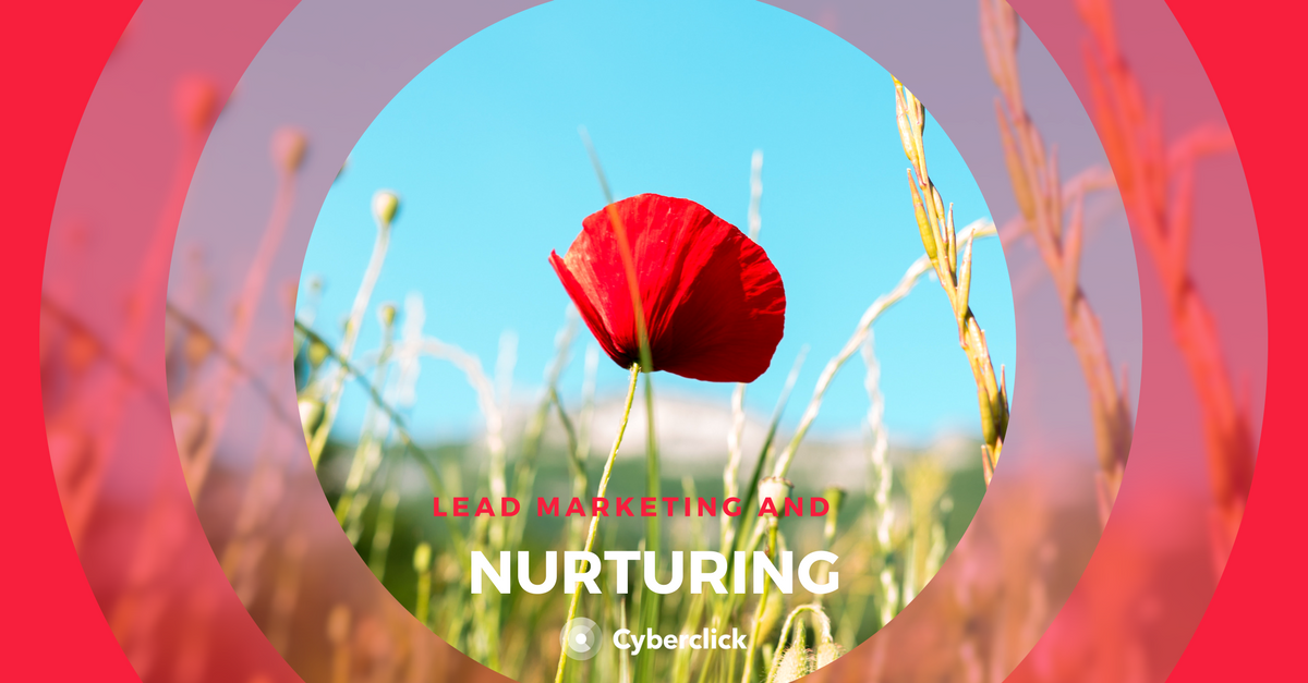Lead nurturing and marketing
