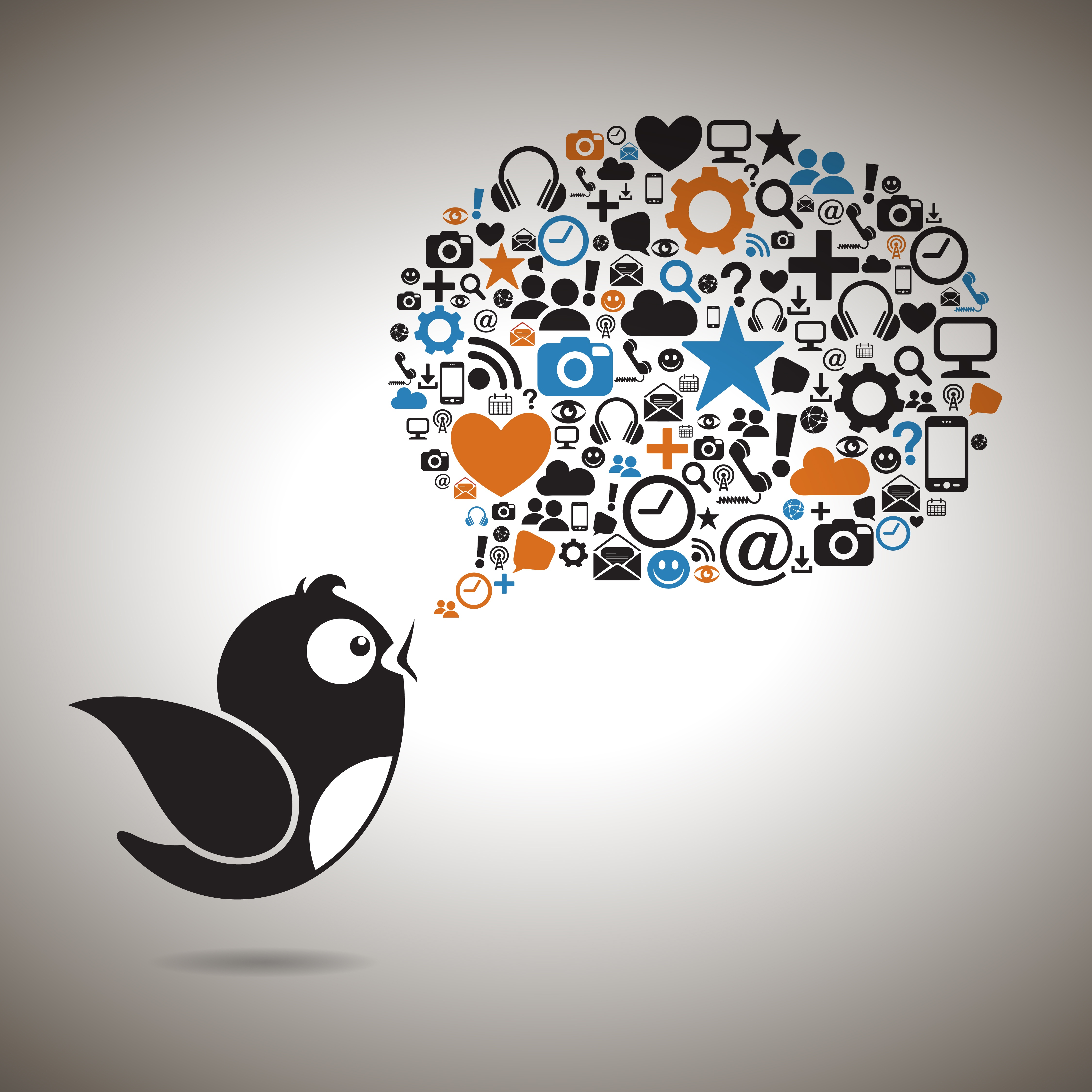 Twitter-Audience-Insight