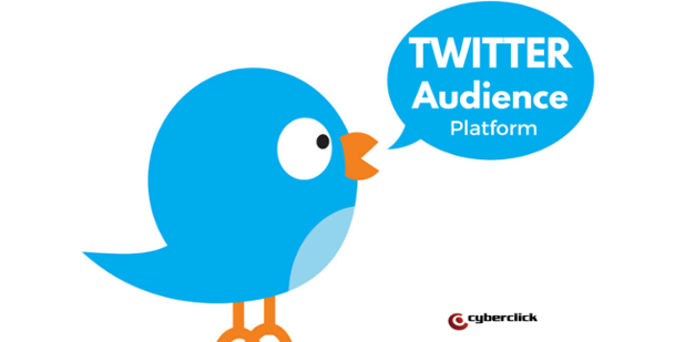 Twitter_Audience_Platform-1.png