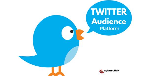 Twitter_Audience_Platform-1.png
