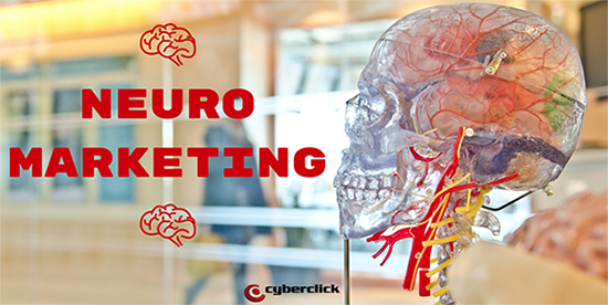 Que es el neuromarketing, como usar la neurociencia en marketing