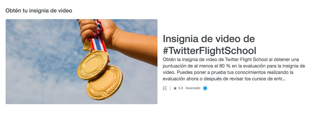 Twitter-Flight-School-insignia