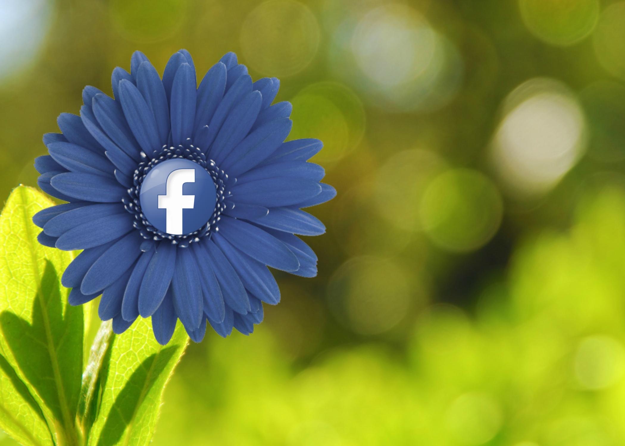 facebook-red_social.jpg