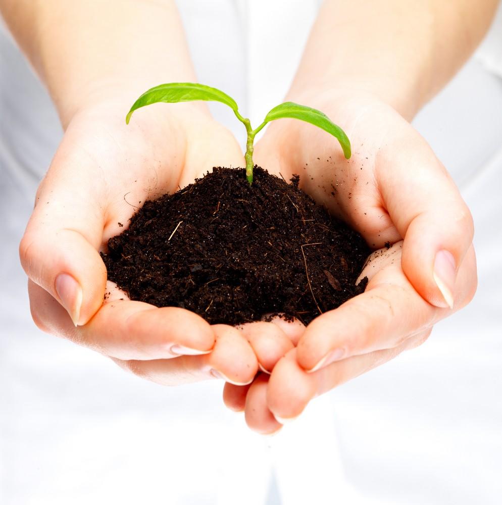 lead-nurturing-como-cuidar-a-tus-clientes-potenciales